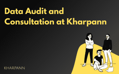 Data Audit and Consultation at Kharpann
